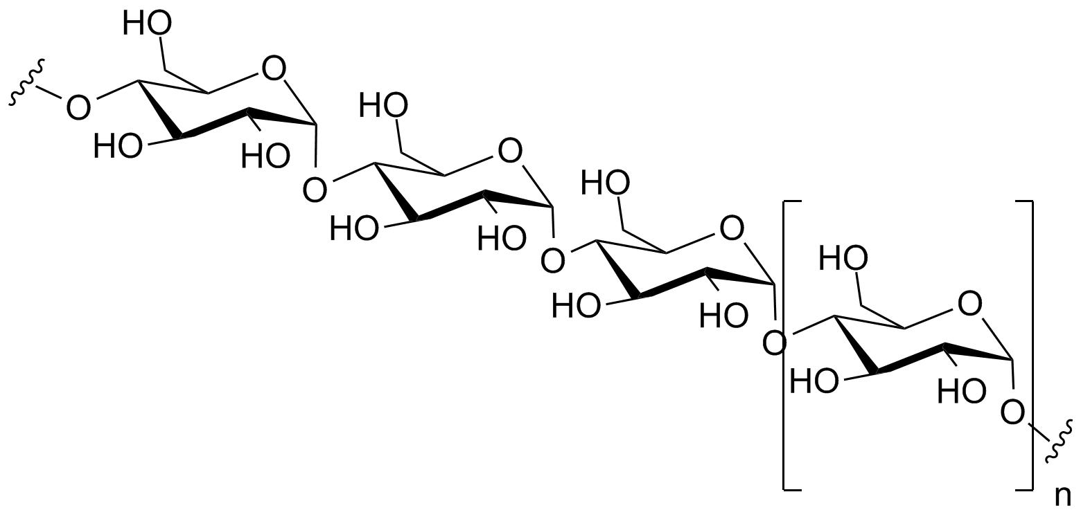 Functional Polysaccharides