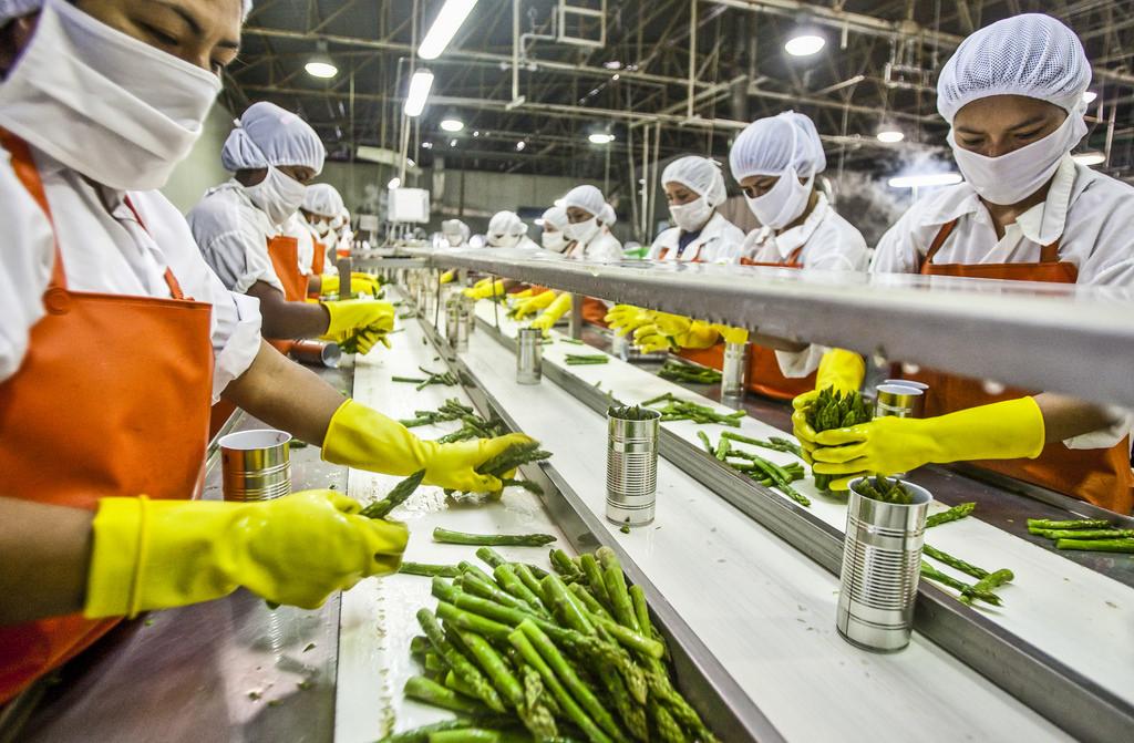 Food Facility Design